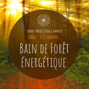 profiter d'un soin énergétique avec les arbres en forêt