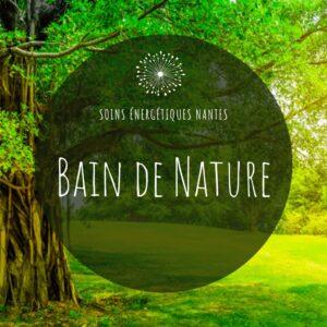 les bains de nature proposés par Soins Energétiques Nantes