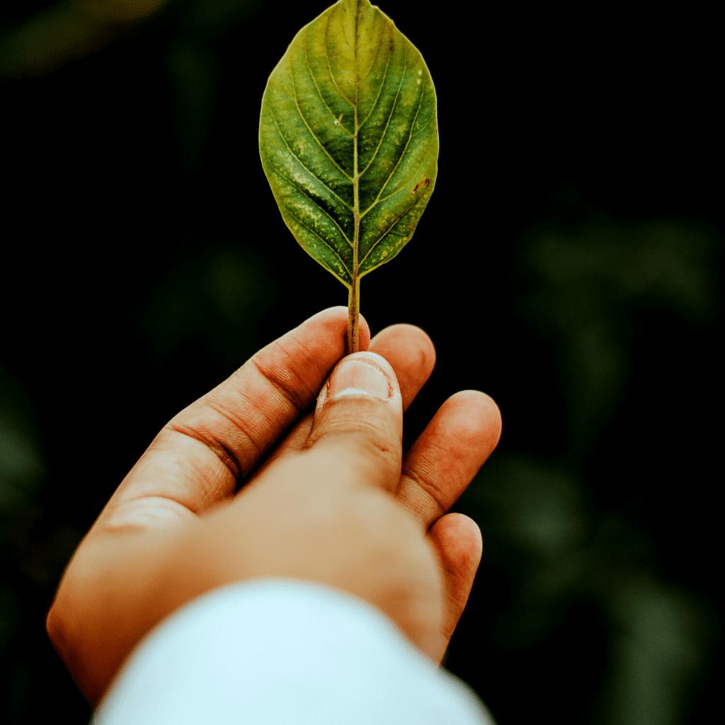 soin énergétique et nettoyage karmique